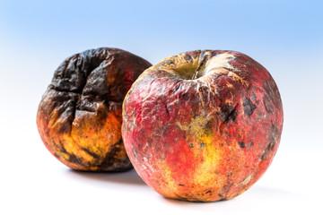 Old rotten apple