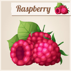 Detailed Icon. Raspberry.