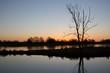 Sonnenaufgang im Oderbruch