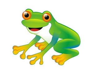 frog toad amphibian character mascot image vector