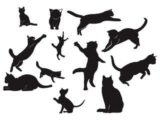 Cat - Silhouette