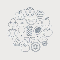 fruit line icon circle set