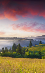 Colorful summer sunrise in the foggy mountains.