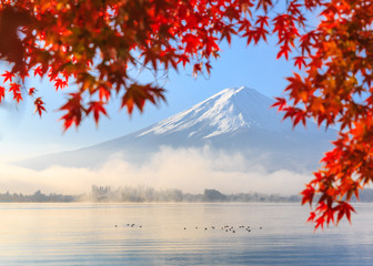 Wall Mural - Autumn Season and Mountain Fuji