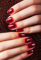 Fototapete - Women's manicure with maroon-red gradient polish on the nails.