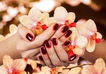 Wall Mural - Women's manicure with maroon-red gradient polish on the nails.