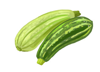 picture of two zucchini