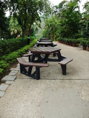 Walk way with green trees, trimmed hedges, table and chairs
