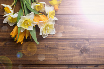 Background with fresh daffodils and tulips
