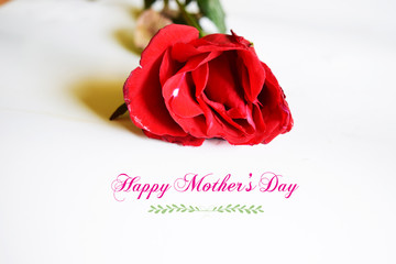 happy mothers day with flower