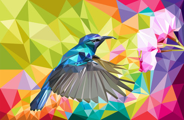 Cute Hummingbird Low Poly