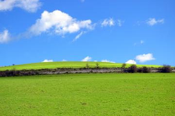 Collina con erba verde e nuvole nel cielo blu