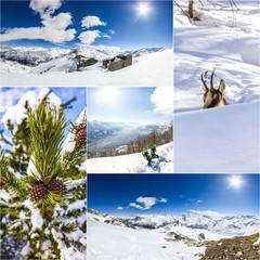 Wall Mural - Collage di foto invernali in montagna