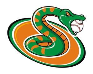snake pyton reptile baseball sport image vector