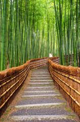 Fond de hotte en verre imprimé Bestsellers Path to bamboo forest, Arashiyama, Kyoto, Japan
