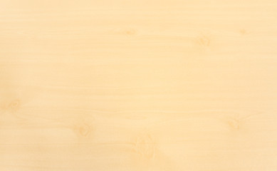 White Brown Wooden Surface Texture with Few Whirl Patterns