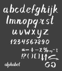 Hand drawn ink Vector alphabet.