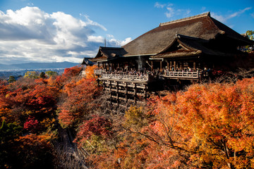 Poster Kyoto Kiyomizu-dera stage with fall colors