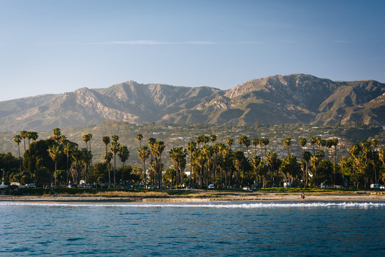 View of palm trees on the shore and mountains from Stearn's Whar