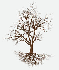 Dead Tree Branches Vector