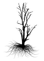 Dead Tree Black Vector