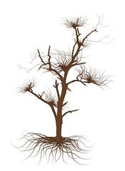 Brown Dead Tree Vector Graphic