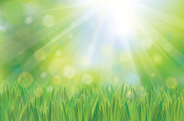 Vector green spring background.