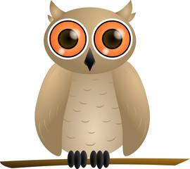 Brown owl with orange eyes