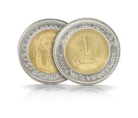 One Egyptian Pound Closeup