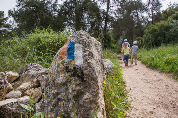 The Israel trail