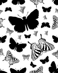 Seamless pattern with black silhouettes of butterflies on white