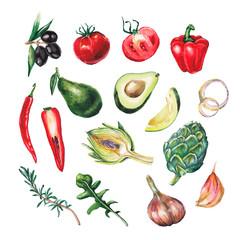 watercolor big vegetables set