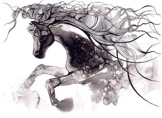 Foto auf Leinwand Gemälde horse