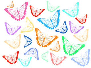 Colored contours butterfly background