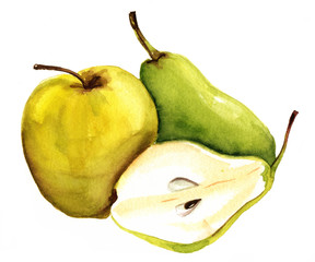 Watercolour apple, pear and half pear on white background