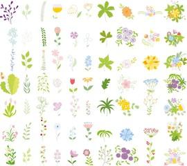 Набор цветами свадеб графический набор, рука рисунок