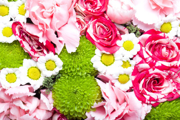 Background of fresh colorful flowers