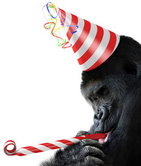 Gorilla party animal with a birthday hat and noisemaker horn