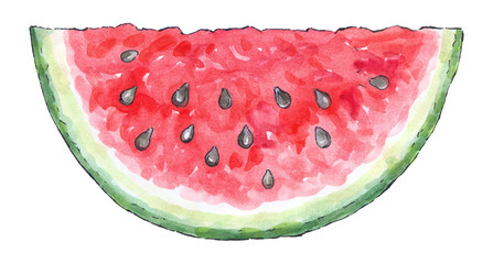Watercolor painting of a set of fruit: watermelon