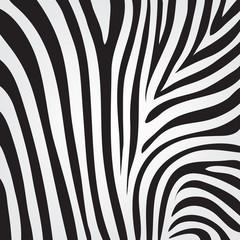 vector zebra texture
