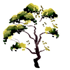 Illustration isolated tree