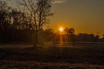 Sonnenuntergang an einem kalten Windertag