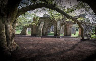 Aluminium Prints Ruins Margam Park ruined abbey