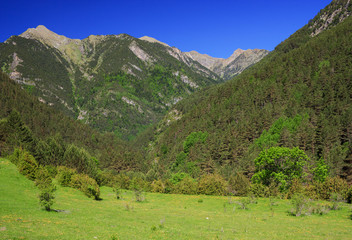Amazing view of mountain landscape in national park Aiguestortes