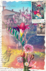 Canvas Prints Imagination Old fashioned postcard with flowers of spring and stamps series