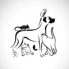Vector group of pets - Dog, cat, parrot, chameleon, rabbit, butt