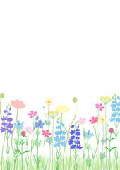 ナチュラルガーデン かわいい草花