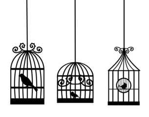 Wall Murals Birds in cages birdcage