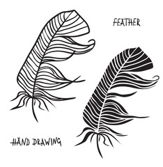 Hand drawn silhouettes of feathers in black and white