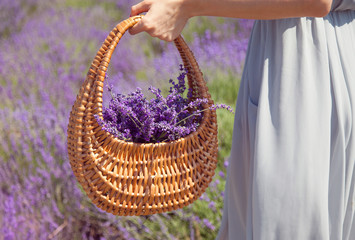 Wicker basket with a lavender